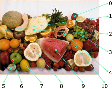Fruit learning english with pictures grammar vocabulary ibookread Download